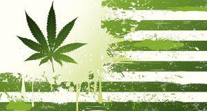 Proposta de legalização do cânhamo avança no Senado Americano