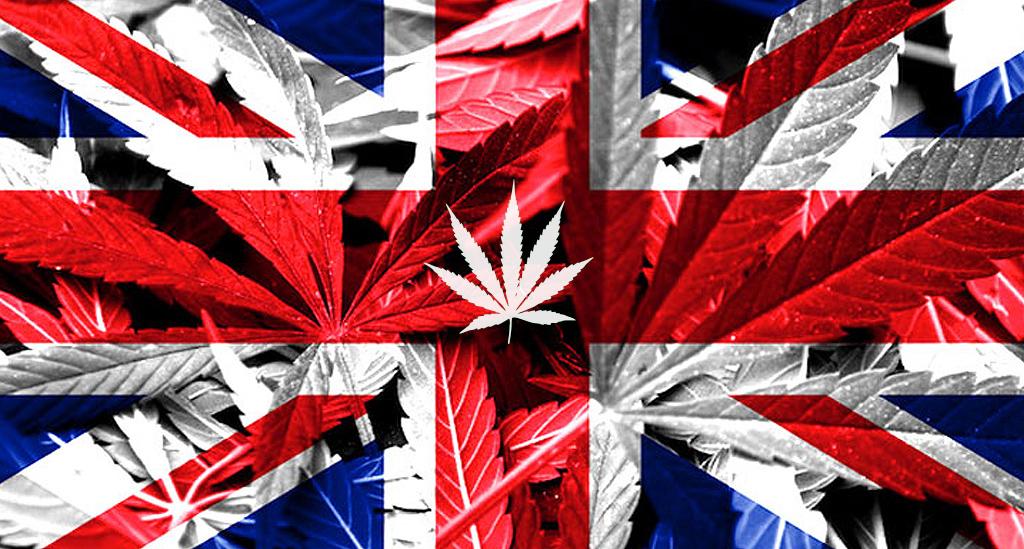 Óleo de Cannabis na Inglaterra
