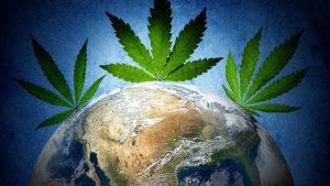 33 países onde a cannabis medicinal é legalizada