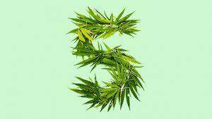 5 grandes efeitos da legalização