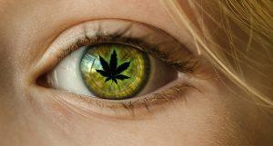 A cannabis melhora sua visão noturna?