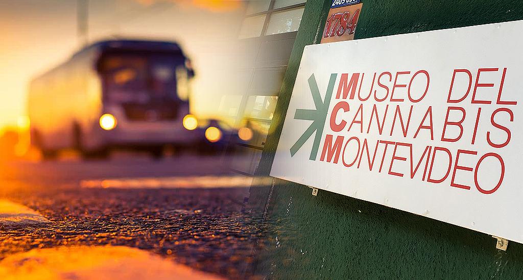Dr Banz Viajando para o Museo del Cannabis