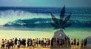 Dr Banz – Descriminalização da maconha no Hawaii