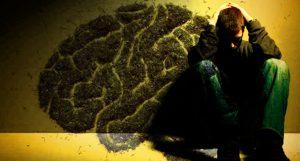 Dr Banz - CBD mostra efeito terapêutico em casos de psicose