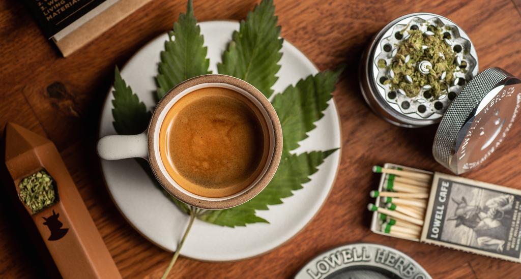 Dr Banz - Cannabis Café