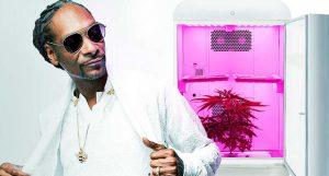 Dr Banz - Snoop Dogg & Seedo