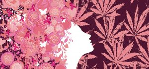 Dr Banz - Efeitos da cannabis no corpo feminino
