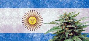 Dr Banz - O que a Argentina está tramando