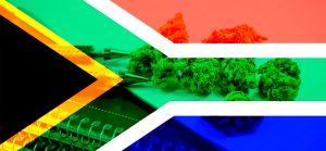 Dr Banz - Faculdade de Cannabis na África doSul
