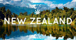 Dr Banz - Nova Zelandia