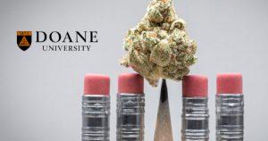 Dr Banz - Por que uma pequena universidade de Artes está se tornando a líder na educação cannábica?