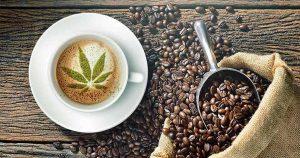 Dr Banz - Beneficios da cafeina com CBD