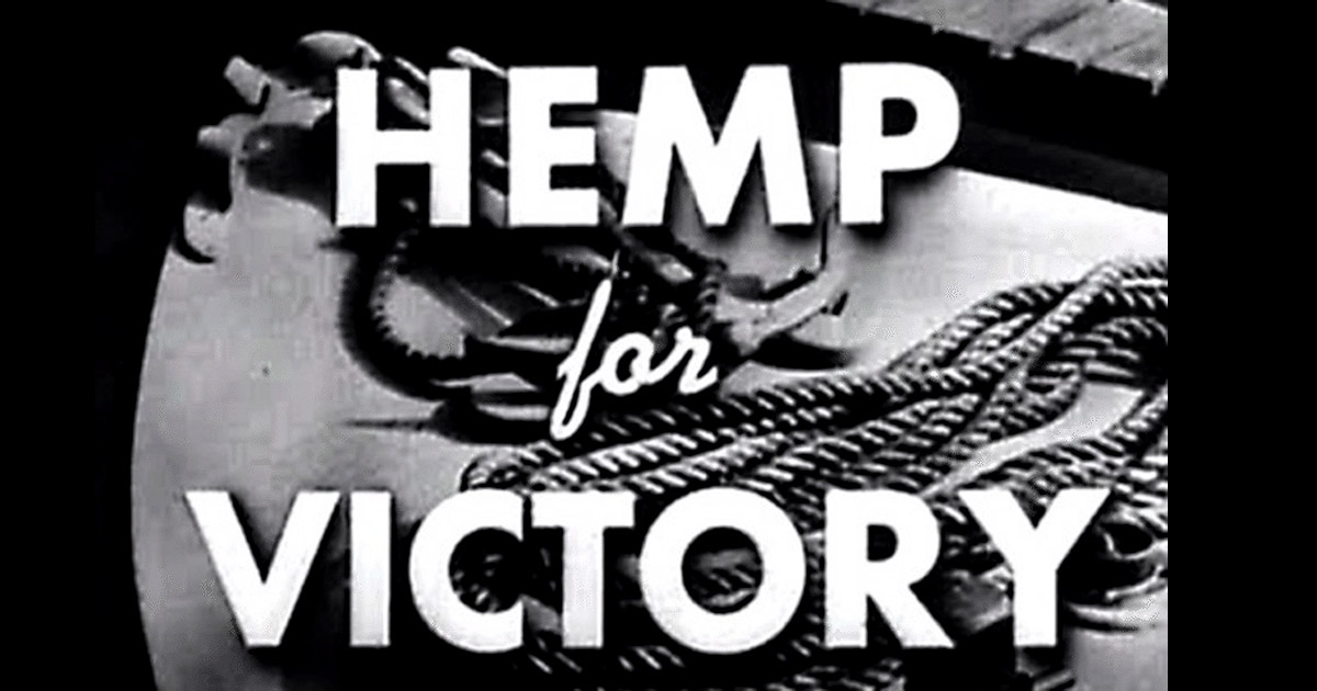 Dr Banz - Hemp for Victory