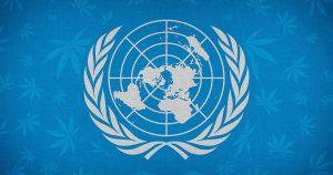 Dr Banz - ONU retira CANNABIS da lista de substancias mais perigosas