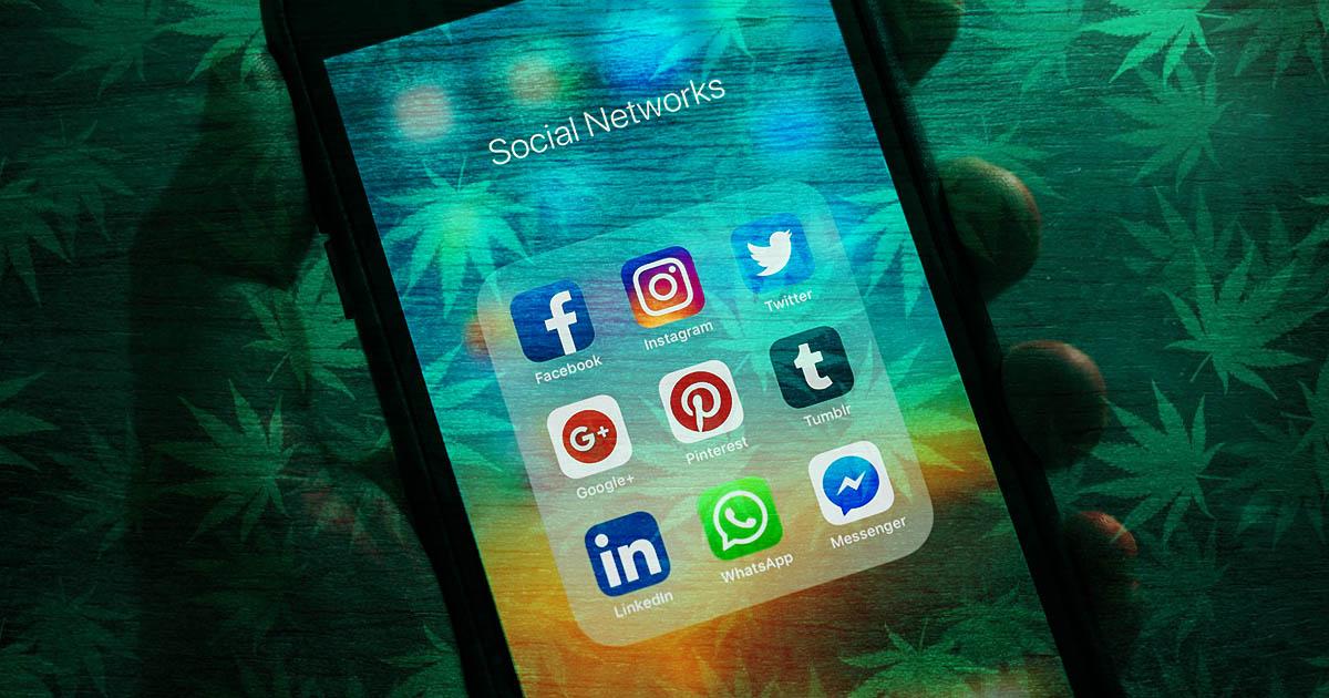 Dr Banz - Porque as Redes Sociais ainda banem conteúdo c4nábico